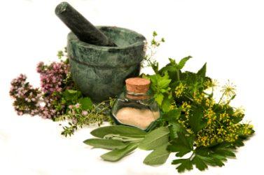 fsh-düşüklüğüne-bitkisel-çözümlerfsh-düşüklüğüne-bitkisel-çözümler